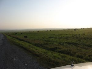 Россия. Алтайский край. Дороги. Russia. Altai region. Roads.