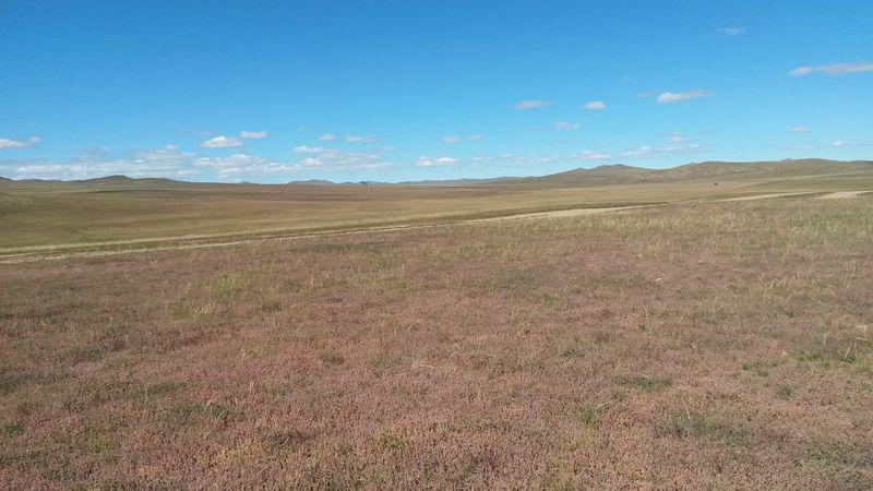 Автопутешествие по Монголии. Монгольские степи. Autotravel through Mongolia. Mongolian steppes.