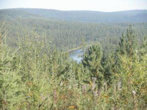 Усть-Кут - Северобайкальск. Река Таюра. Ust-Kut - Severobaikalsk. The Tayur River.