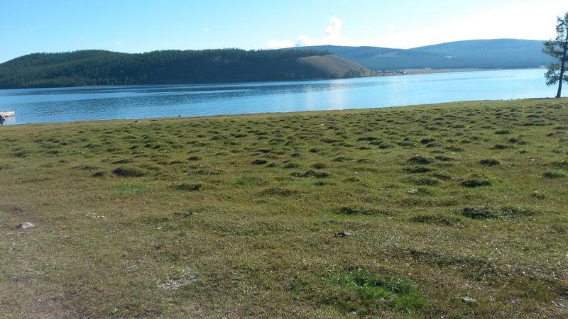 Монголия. Берега озера Хубсугул. Mongolia. Shores of Lake Hubsugul.