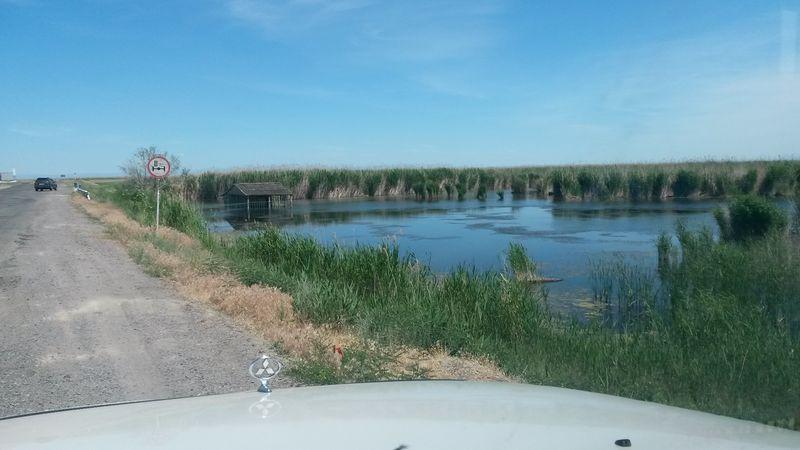 Дорога Учарал - Аягоз. Озеро Сасыколь. The road Ucharal - Ayagoz. Sasykol Lake.