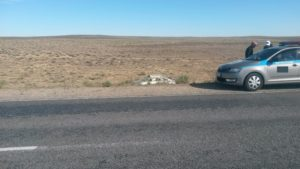"""Балхаш - Сарышаган. """"Дорога смерти"""". Balkhash - Saryshagan. """"The road of death."""""""