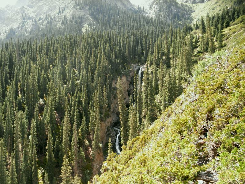 Тянь-Шань. Киргизия. Барскаун. Водопады. Tien Shan. Kyrgyzstan. Barskaun. Waterfalls.
