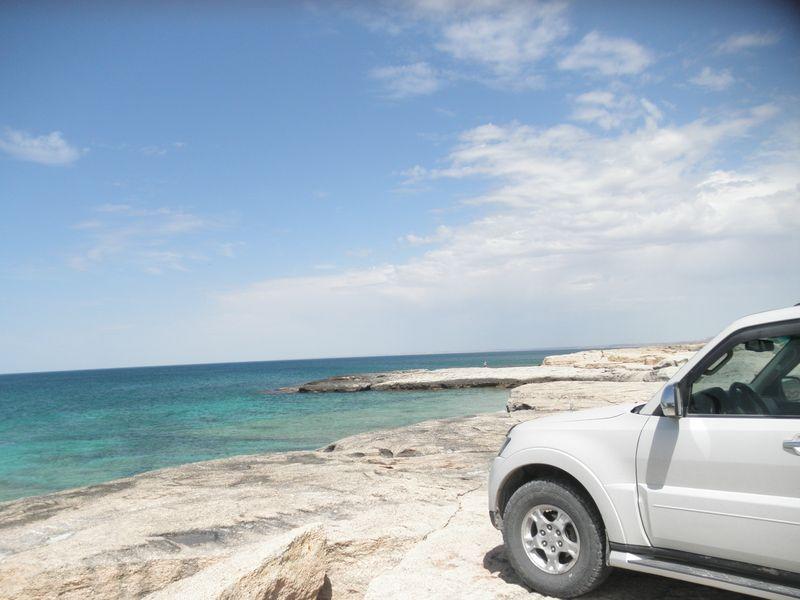 Западный Казахстан. Каспийское море. Ракушечный пляж. Western Kazakhstan. Caspian Sea. Shell beach.