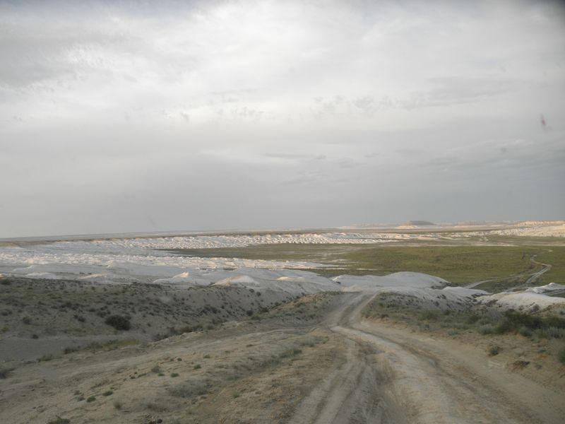 Западный Казахстан. Устюртский природный заповедник. Western Kazakhstan. Ustyurt nature reserve.
