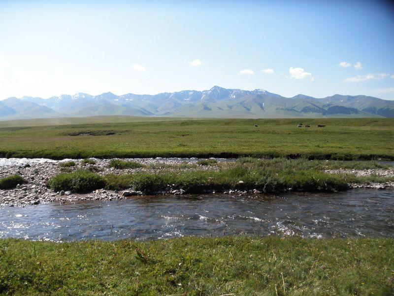 Долина реки Шалкудысу. Горы Кетмень. Казахстан. Valley of the river Shalkudysu. Ketmen mountains. Kazakhstan.