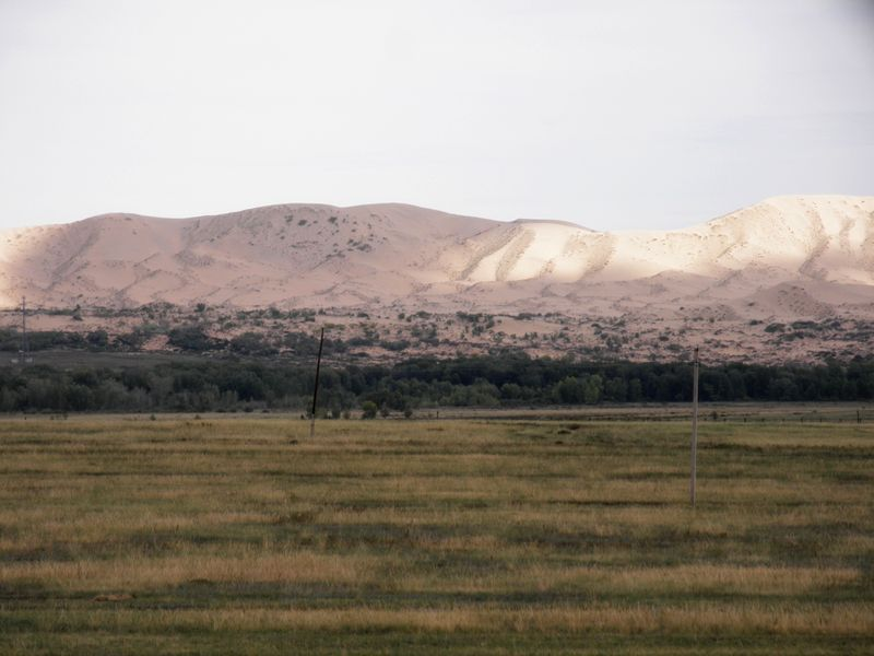 Пески Аккум. Китайская граница. Восточный Казахстан. Sands Akkum. Chinese border. Eastern Kazakhstan.