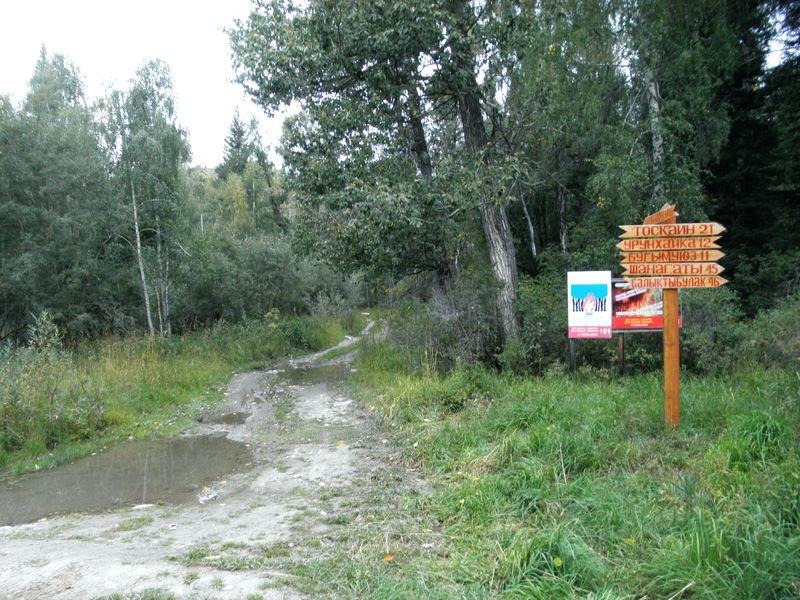 Старая Австрийская дорога. Восточный Казахстан. Old Austrian road. Eastern Kazakhstan.